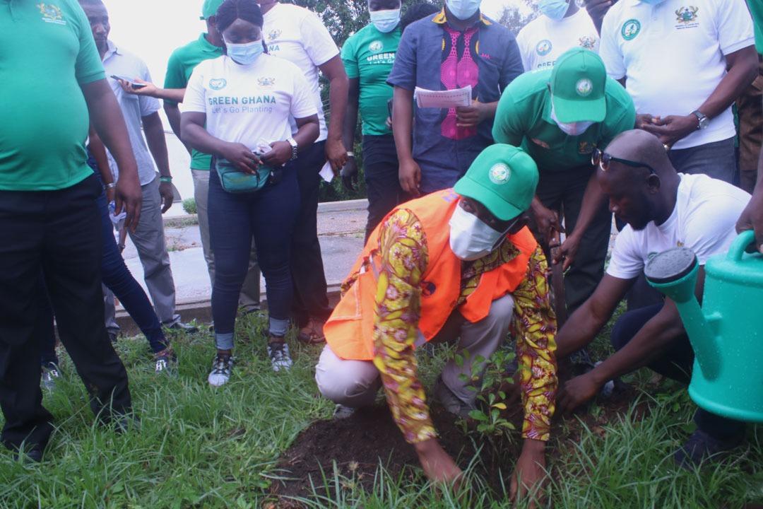 GREEN GHANA DAY;WESTERN REGION TO PLANT 500,000 TREES